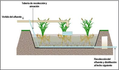 Humedal subsuperficial de flujo vertical Bidatek