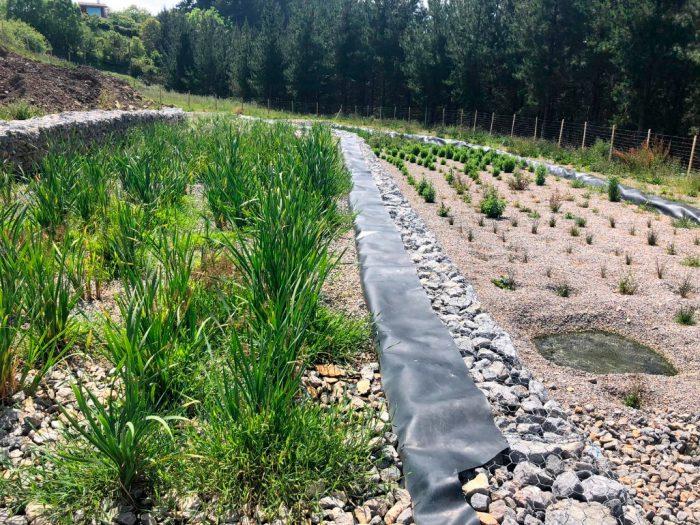 Humedales de flujo subsuperficial con circulación del agua de tipo subterráneo Bidatek